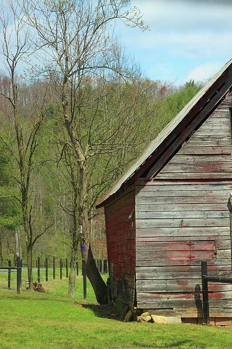 Roadside Blue Ridge Barn 7 by Cathy Lindsey   Barn pictures .