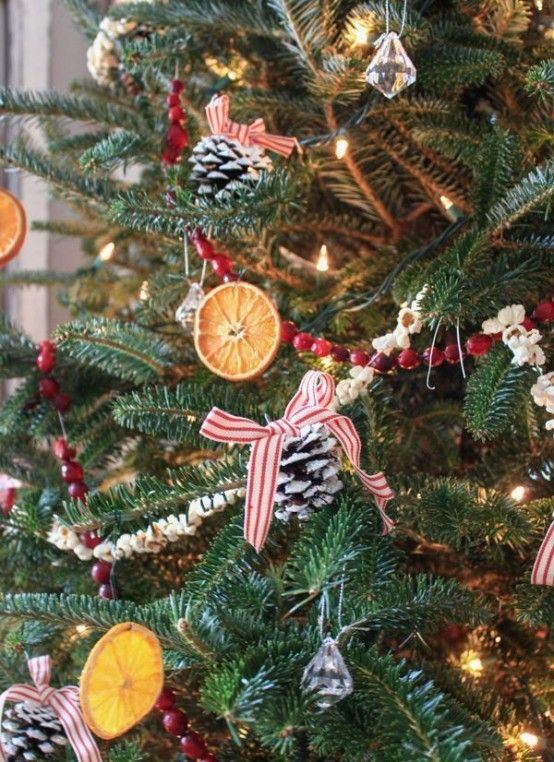 30 Aromatic Citrus Christmas Decorations You'll Love   Christmas .