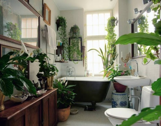 Bathroom Design Ideas With Plants And Flowers | Fresh Home Bl