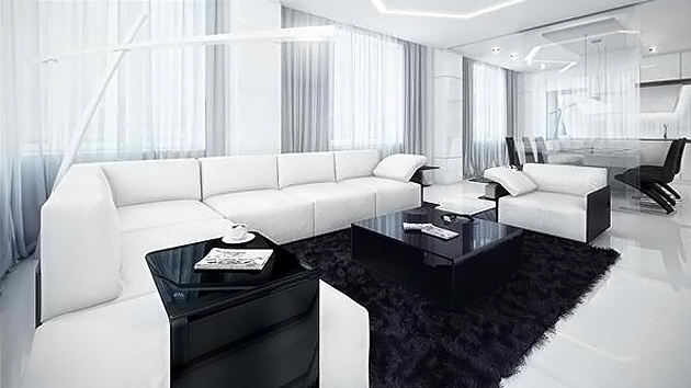 20 Modern Contemporary Black and White Living Rooms   Home Design .