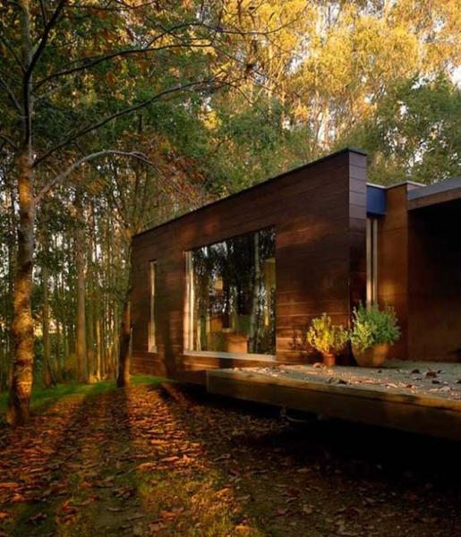 33 Forest Cottages and Modern Houses Surrounded by Trees and .