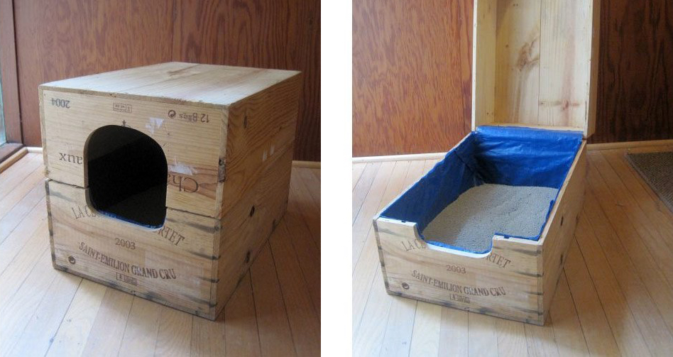 8 Creative Ways to Hide Your Cat's Litter Box | Healthy Pa