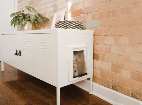 Here's a Shockingly Simple Way to Hide Your Cat's Litter Box - DIY .
