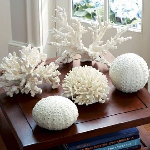 Decorating With Sea Corals: 34 Stylish Ideas (With images)   Coral .