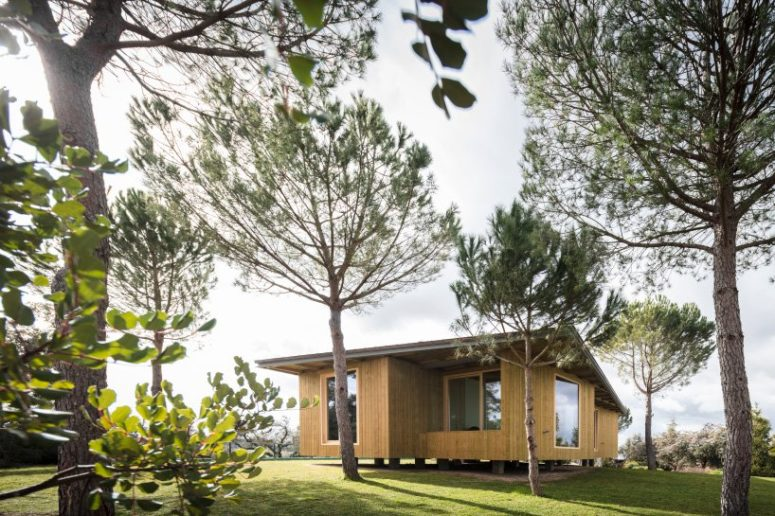 Contemporary Elevated Timber Home Extension - DigsDi