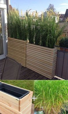 Garden Screening Ideas | 500+ articles and images curated on .