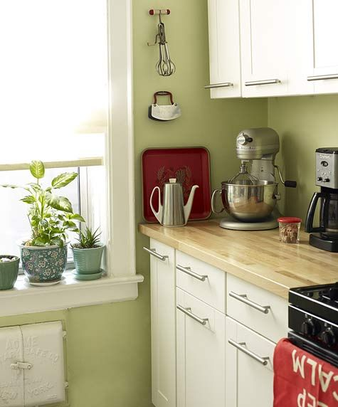 This green kitchen ideas will make your personal space fresh .