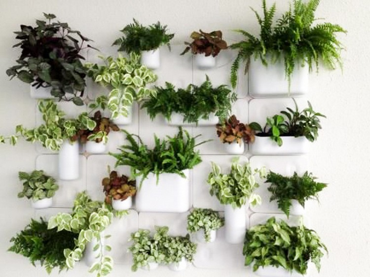 Amazing Home Décor With Greenery   Home Decor Ide