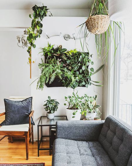 Stunning Living Wall Ideas for Any Ro