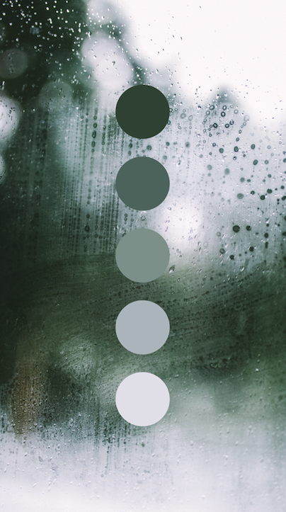 Moody, rainy day color palette designed by Amari Creative. #color .