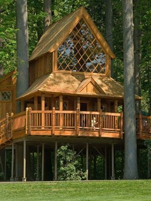 Gravity-Defying Treehouses in 2020   Tree house, Tree house .