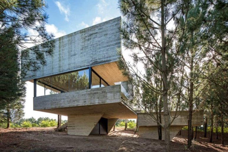 Minimalist House In The Trees That Defies Gravity - DigsDi