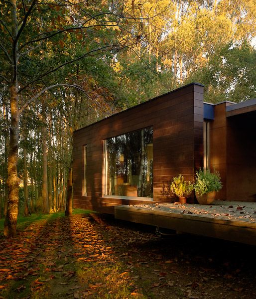Wood House Concept Harmony With Nature | House in the woods .