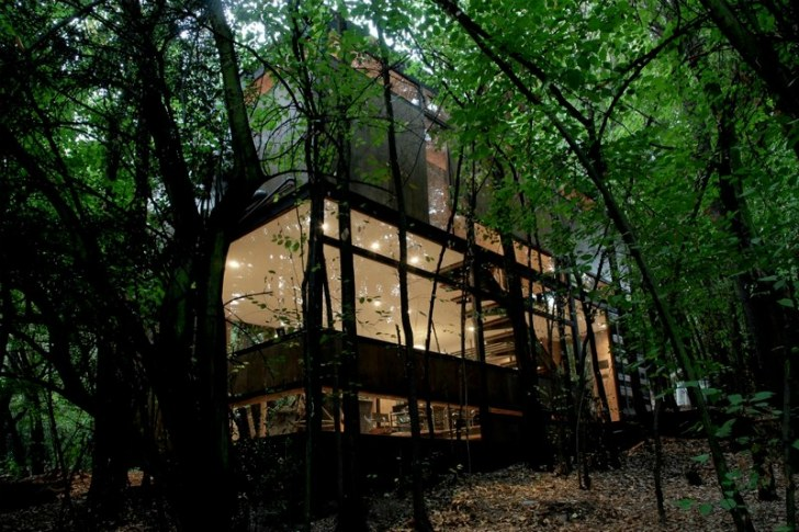 Low Impact Apollo 11 House Lands Silently In the Forest As A Quiet .