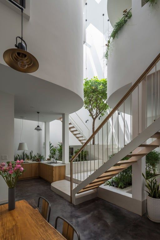 Open plan living spaces full of greenery centered around a triple .