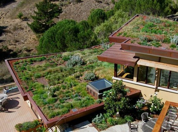 Green Roof view of Three Level House with Green Roof by McGlashan .