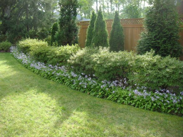 Information About Rate My Space | Modern garden landscaping .