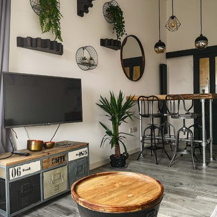 75 Beautiful Small Industrial Living Room Pictures & Ideas .