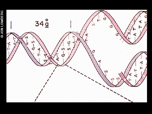 DNA structure magnified, light hit | The DNA structure magni… | Flic