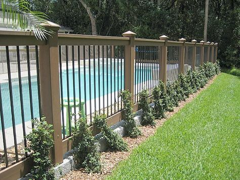 16 Pool Fence Ideas for Your Backyard (AWESOME GALLERY)   Backyard .