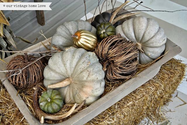Fall Decor: Elegant Ways to Decorate with Pumpkins | Ply G