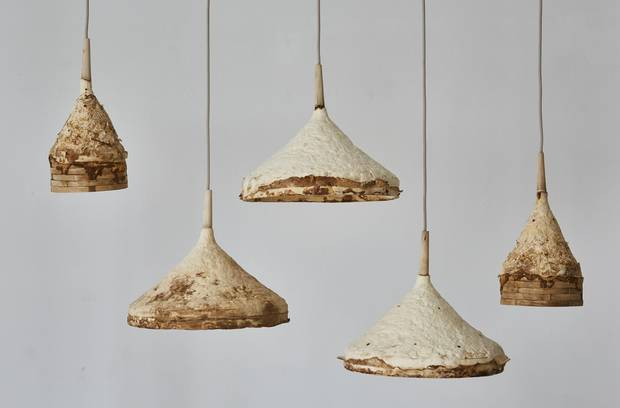 The ultimate sustainable furniture – mushroom lamps and flax seed .