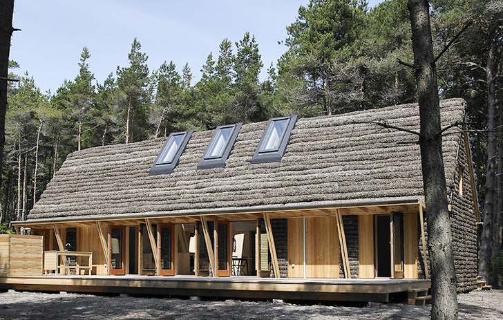 Seaweed-Clad House in Denmark Combines Natural Materials With 21st .