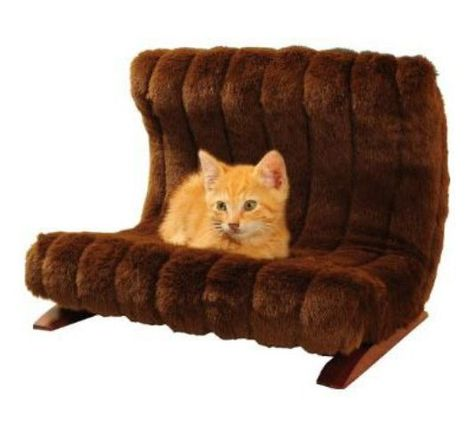 40 Adorable Warm Fur Furniture Pieces For Fall And Winter .