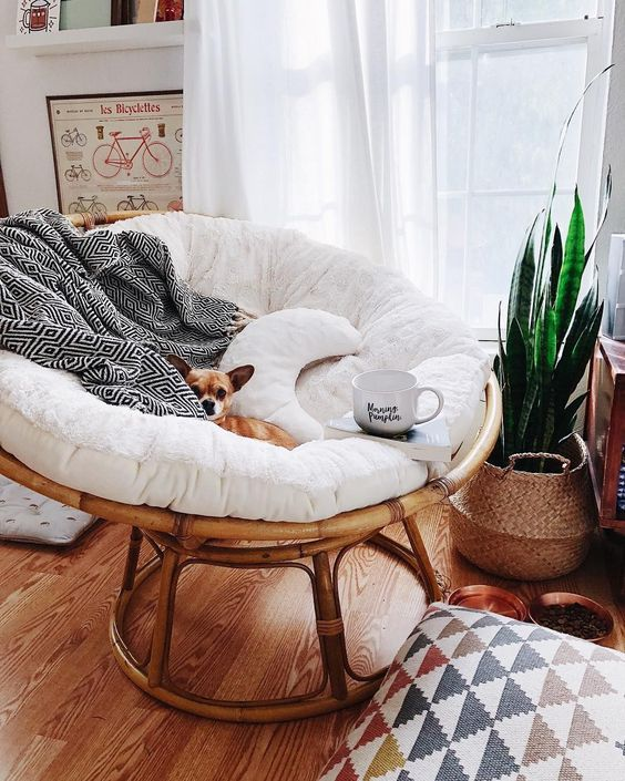 What is the Papasan Chair- Types and Design Ideas Today .